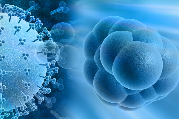 Gene-Therapy Knowledge